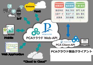 DiscloseAPIの公開で利用拡大